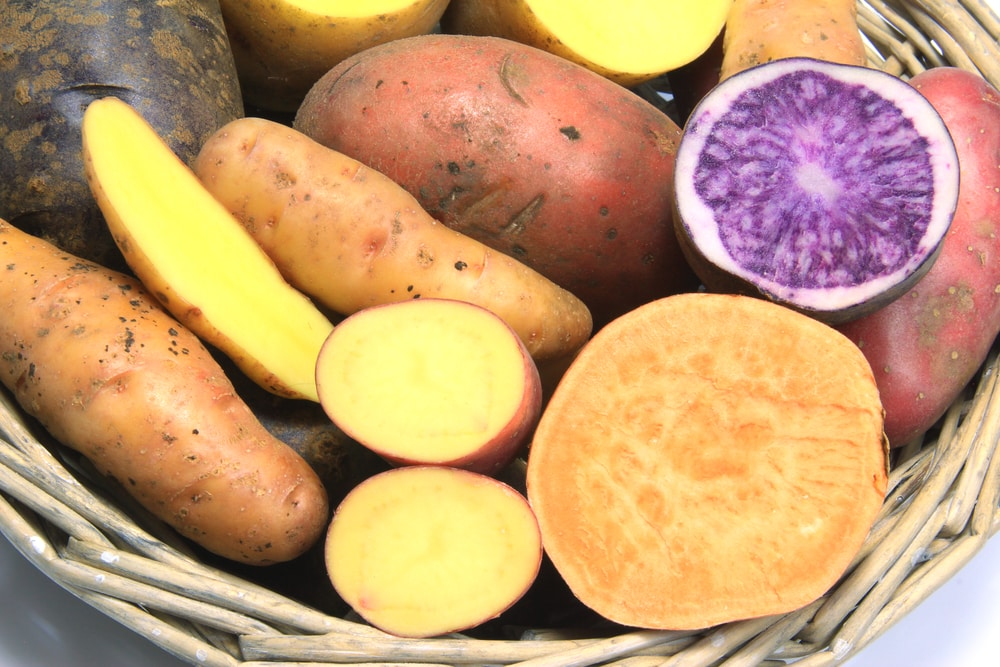 Colored Sweet Potatoes